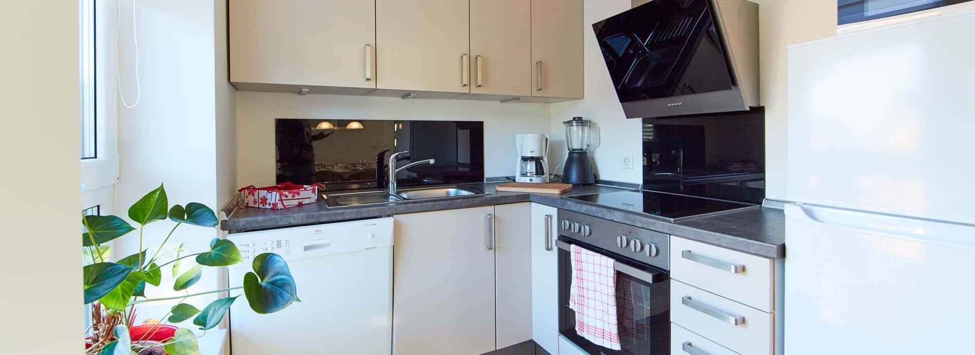 Die modern ausgestatte Küche mit Herd, Kochfeldern, Geschirrspühler und Kühl- Gefrierkombi